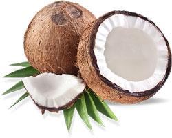 lapte din nucă de cocos proaspătă