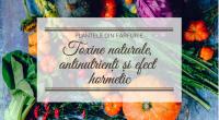 Plantele din farfurie: toxine naturale, antinutrienți și efect hormetic
